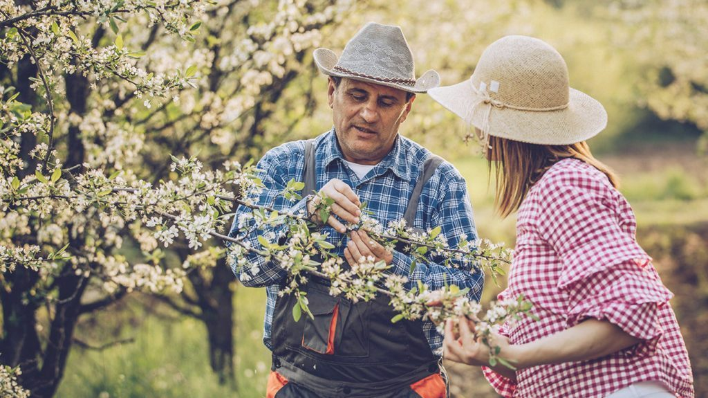 How Bad Will Your Allergies Be This Spring?